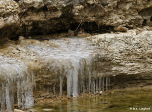 Winter on Hillingon Ranch - When springs freeze, it's cold!