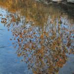 E10 - Block Creek reflections