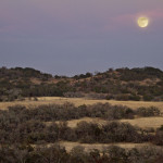 Winter on Hillingon Ranch - winter solstice moonrise