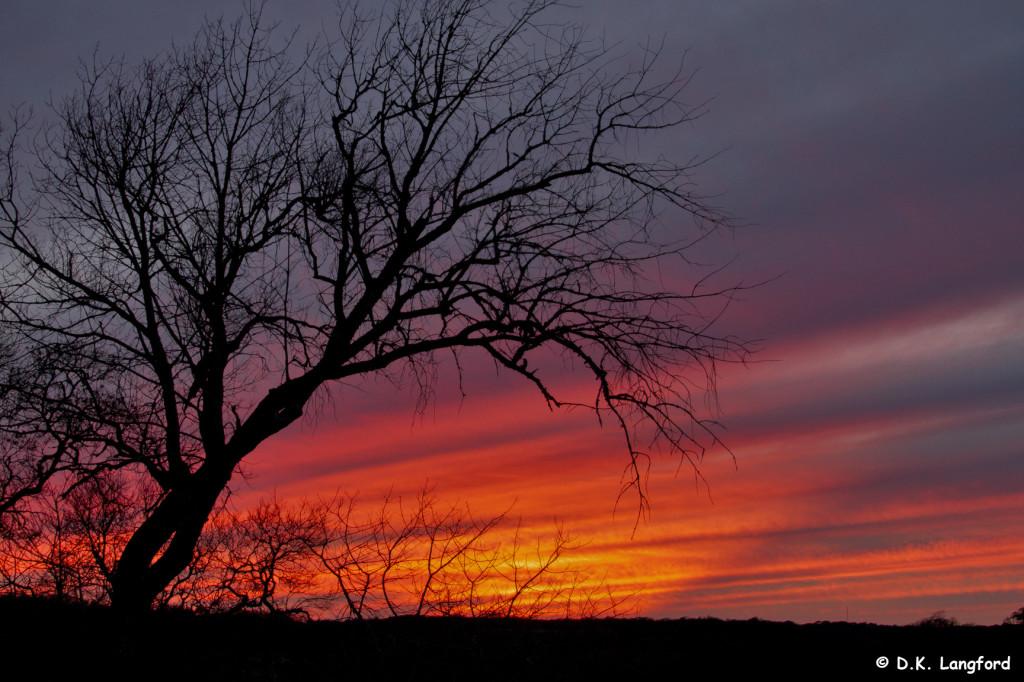 Winter on Hillingon Ranch - Crystal